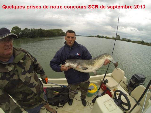 Quelques poissons du concours SCR Gopr0019