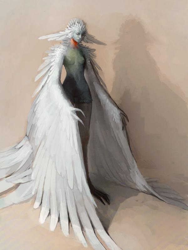 Furie Oiseau10