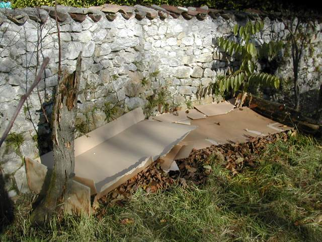 Plate-bande paresseuse (Lazy Bed, Lasagna Bed) Lasagn12