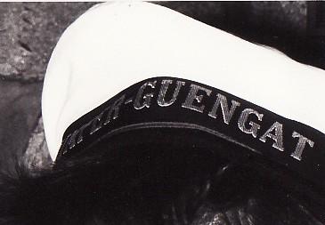 [DIVERS B.A.N.] BAN Quimper-Guengat (ou Gwengat) Img10