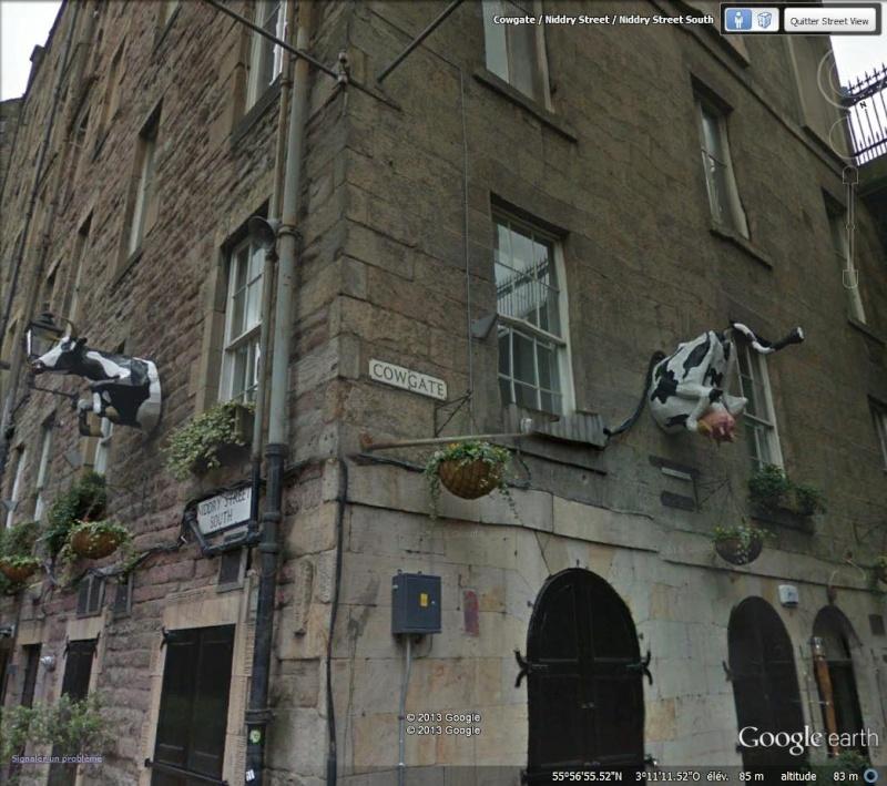 STREET VIEW : les statues de vaches - Page 2 Vache_10