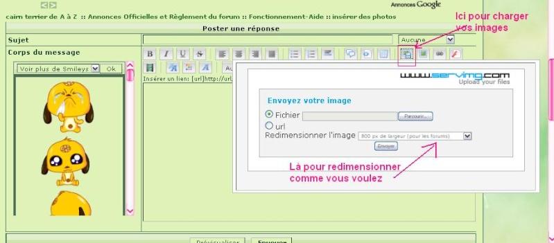 COMMENT METTRE UNE IMAGE SUR LE FORUM !! Cap11010
