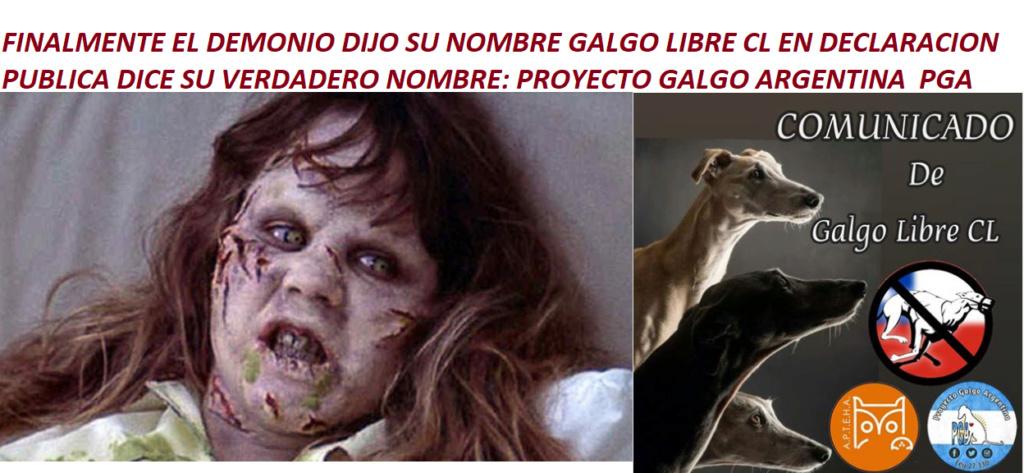 Foro gratis : CARRERAS DE CABALLOS Y GALGOS EN CHILE - Portal Pga10