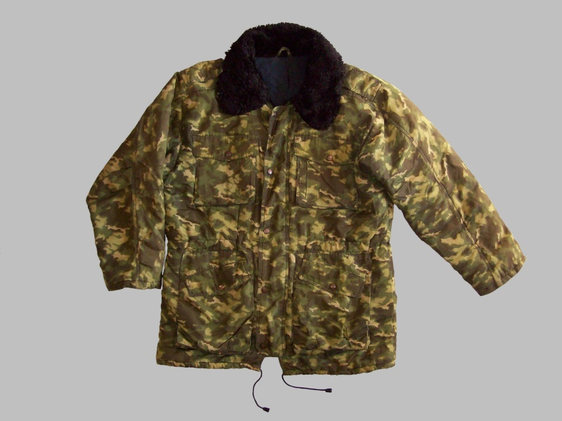 """Russian """"SMK' camouflage - Page 3 100_0625"""