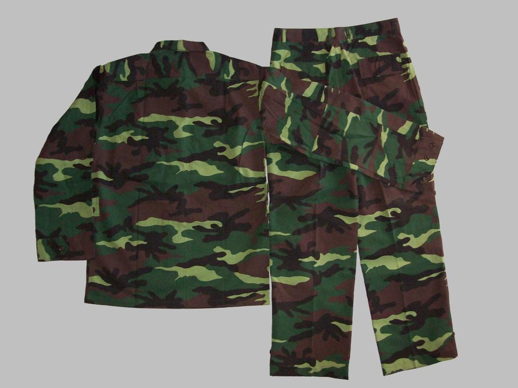 Vietnam camouflage 100_0717