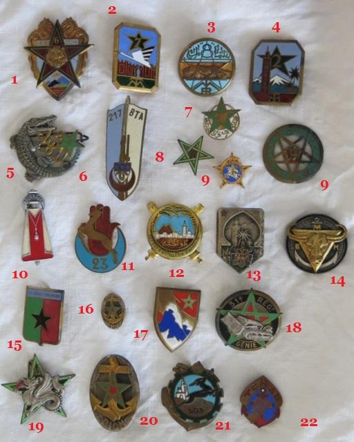 Insignes toutes armes Afriqu11