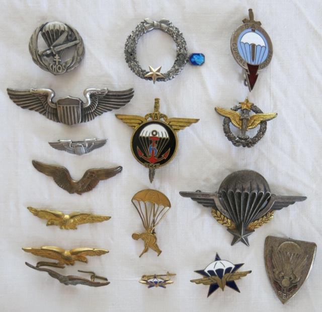 Insignes toutes armes Para_e10