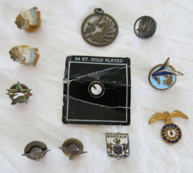 Insignes toutes armes Pins10