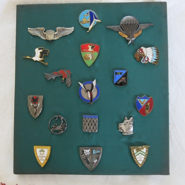 Insignes toutes armes Reprzo10
