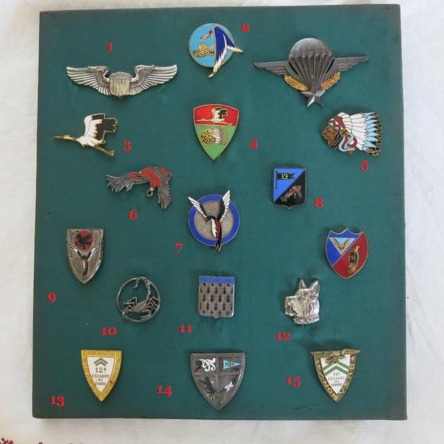Insignes toutes armes Reprzo11