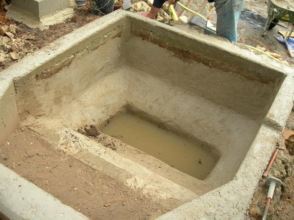 notre bassin pour tortues... Bordur10