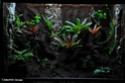 Aménagement d'un terrarium en Elastopur 302b10