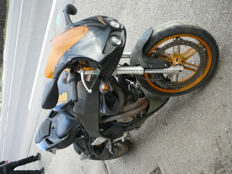 hybride P1040912