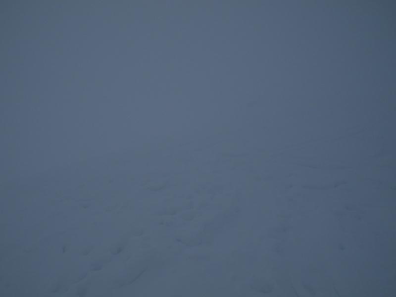 Nouvelles de la neige Sam_1911