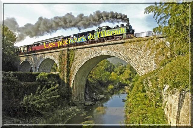 """LE PETIT TRAIN DES """"PECHEURS DE L'HERAULT"""" Train-11"""