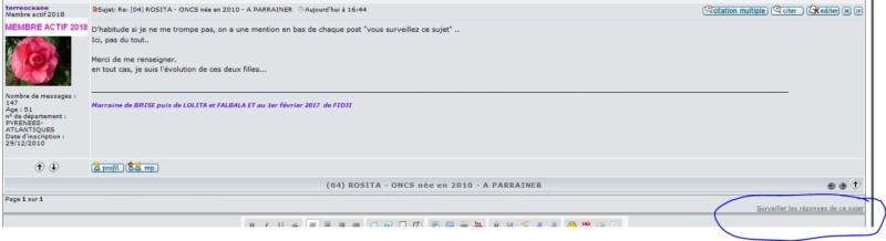 (04) ROSITA - ONCS née en 2010 - A ADOPTER (306 € + don libre) 45610