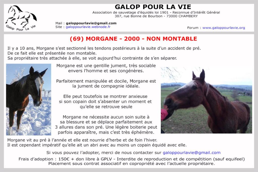 (69) MORGANE – Jument SF née en 2000 – non montable – 150 € ou don libre supérieur à GPLV Morgan13