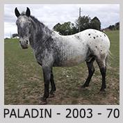 PLACEMENTS / VENTES SOUS CONTRATS Paladi10