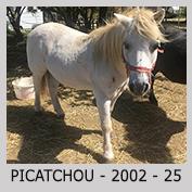 Galop Pour La Vie Picatc10