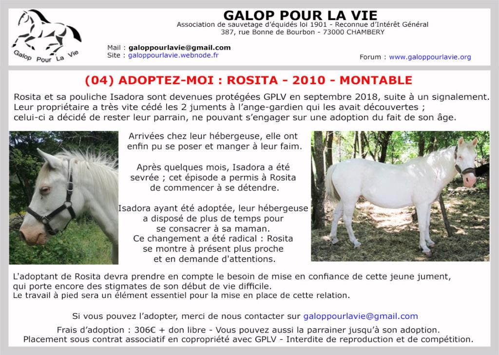 ROSITA - ONC Selle née en 2010 - adoptée en décembre 2020 par Laury Rosita18
