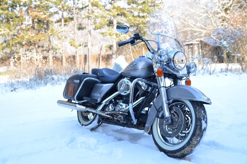 Road King uniquement, combien sur Passion-Harley  - Page 2 Dsc_4610
