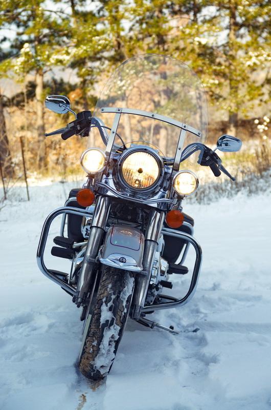 Road King uniquement, combien sur Passion-Harley  - Page 2 Dsc_4612