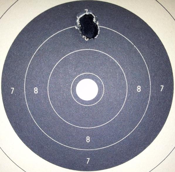 beaumont warrior tir à 250 mètres - Page 2 20130213