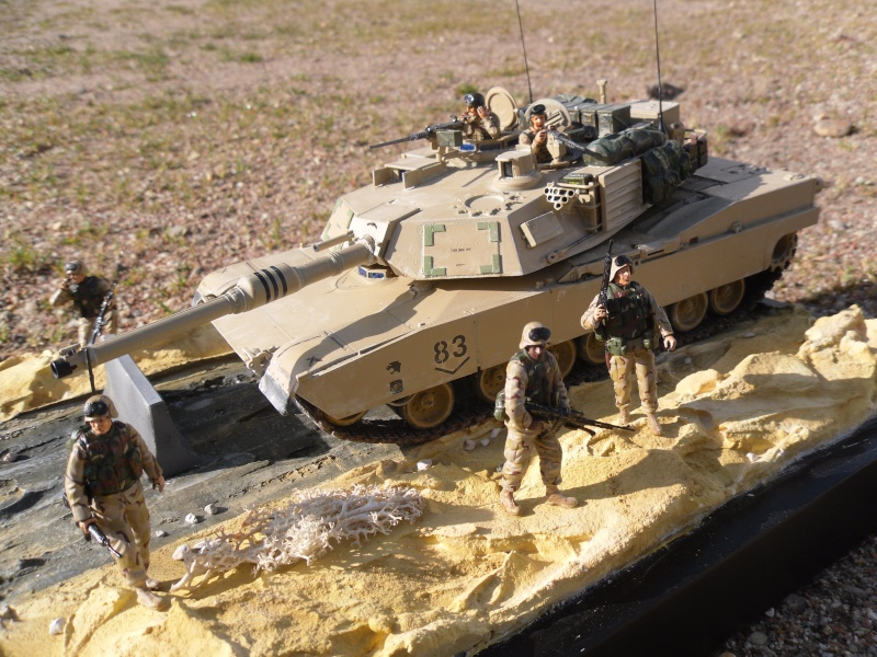 M1A2 Abrams -Photos finales ensoleillées 5/2/11 Sam_0011