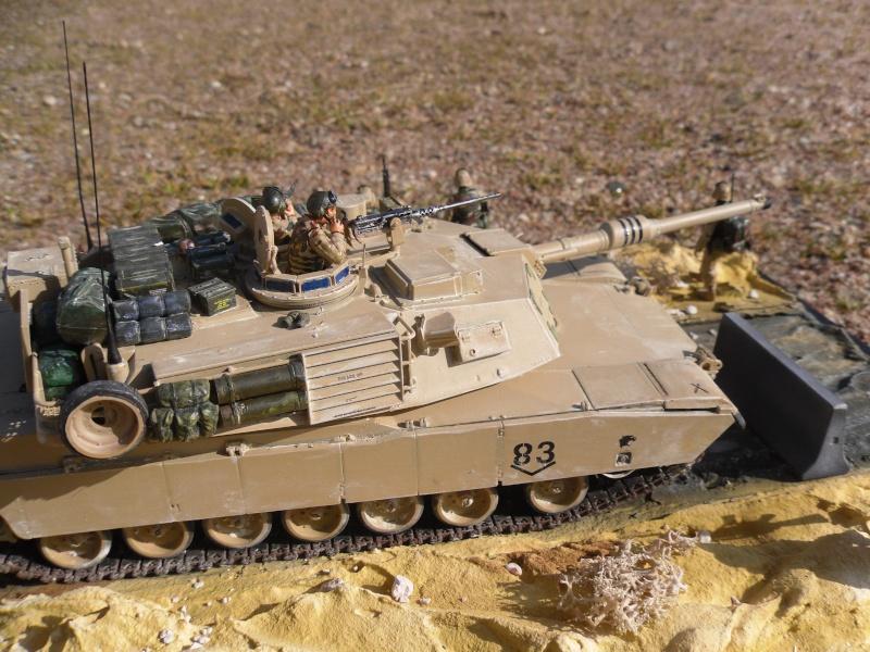 M1A2 Abrams -Photos finales ensoleillées 5/2/11 Sam_0012