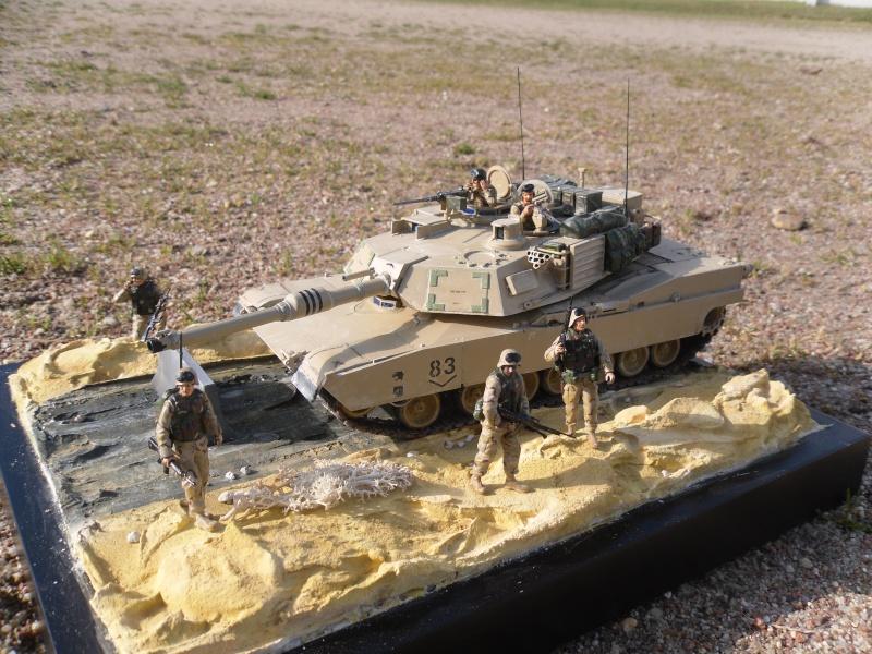 M1A2 Abrams -Photos finales ensoleillées 5/2/11 Sam_0014
