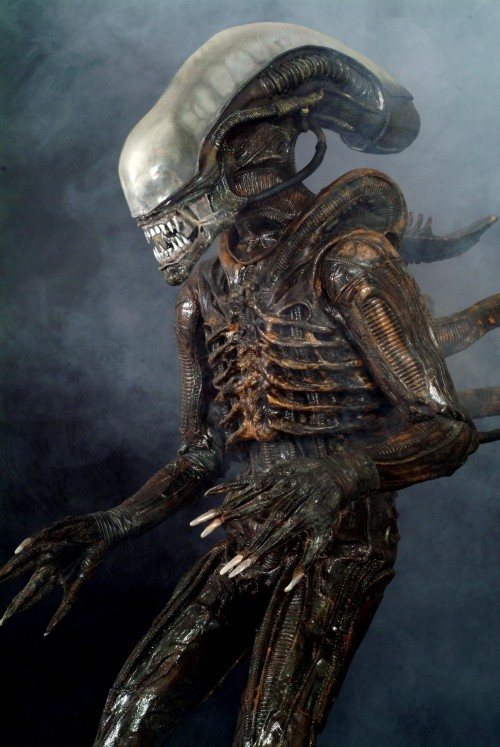 Alien Alien10