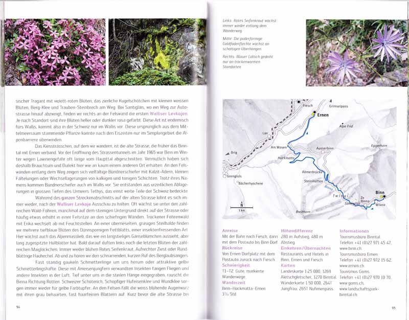 Balades botaniques en Suisse Livre10