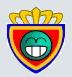 Real Zaragoza PFYC
