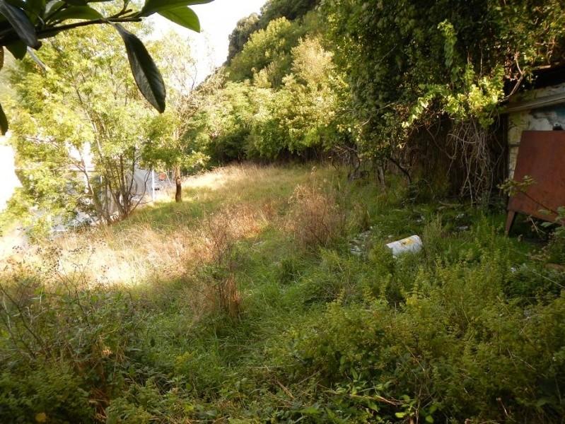 Le jardin de Foix Jardin10