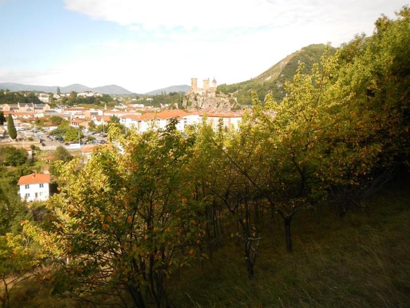 Le jardin de Foix Vue_de11