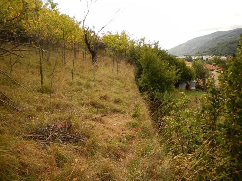 Le jardin de Foix Vue_du10