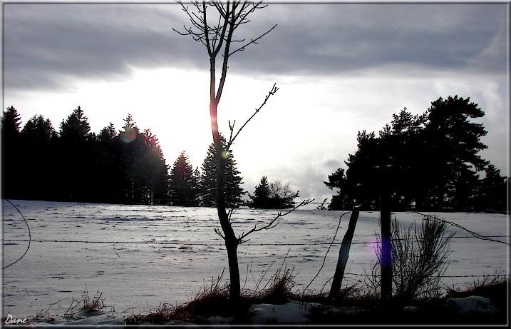 neige et glace dans le Pilat 1_fore10