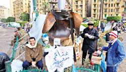 حصريا على منتدى الأرانب للجميع خفة دم الشعب المصرى أثناء المظاهرات مجموعه لن تجدها  الا هنا  Pictur10