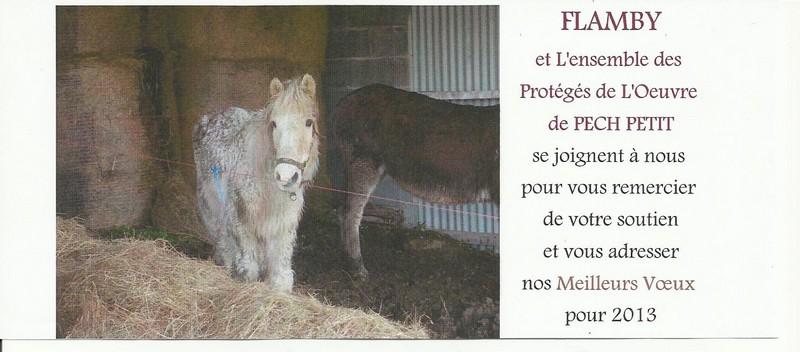 FLAMBY - ONC poney présumé né en 1987 - accueilli en décembre 2012 chez Pech-Petit  - Page 2 Nouvel10