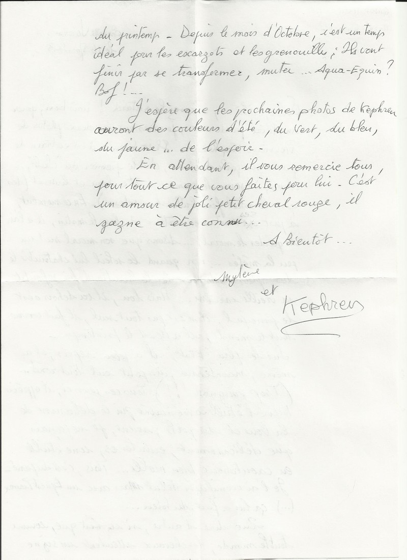 KEPHREN - ONC Selle présumé né en 1993 - Protégé GPLV Nouvel15
