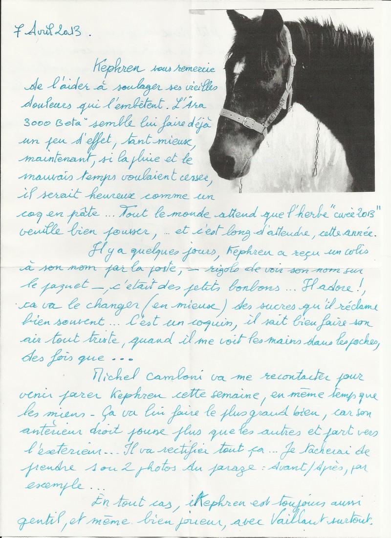 KEPHREN - ONC Selle présumé né en 1993 - Protégé GPLV - Page 2 Nouvel17