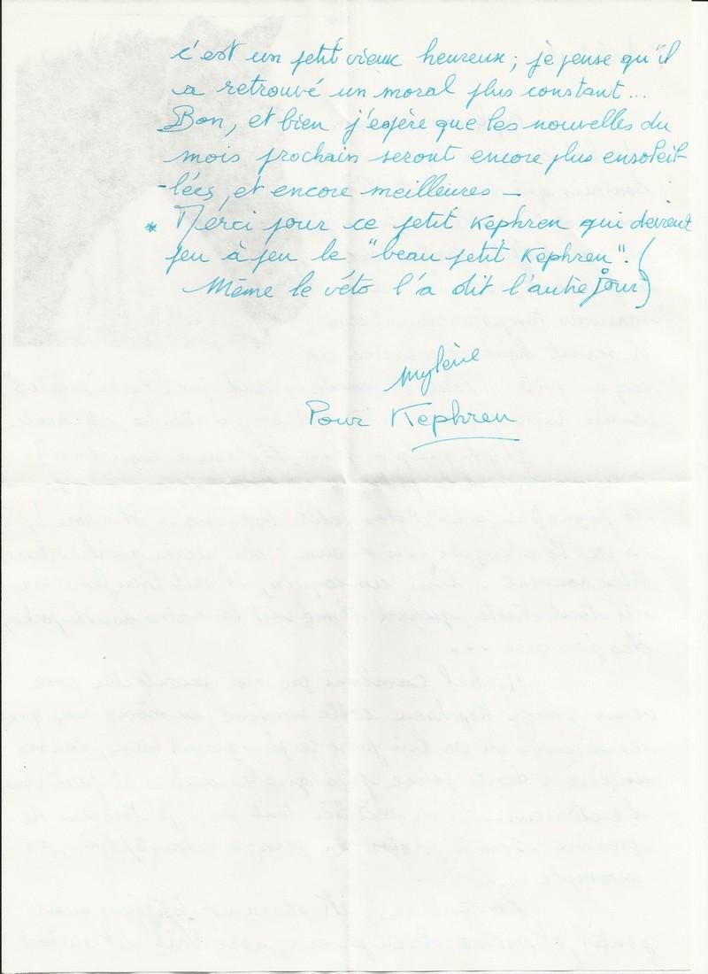 KEPHREN - ONC Selle présumé né en 1993 - Protégé GPLV - Page 2 Nouvel18