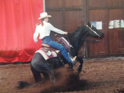 Le reining Images10