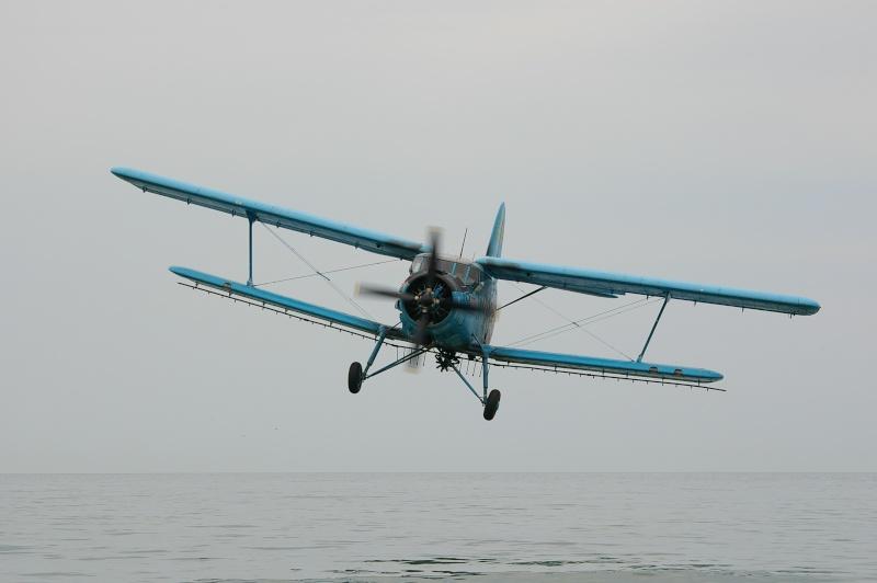 Antonov An-2 - Pagina 6 Imgp0510