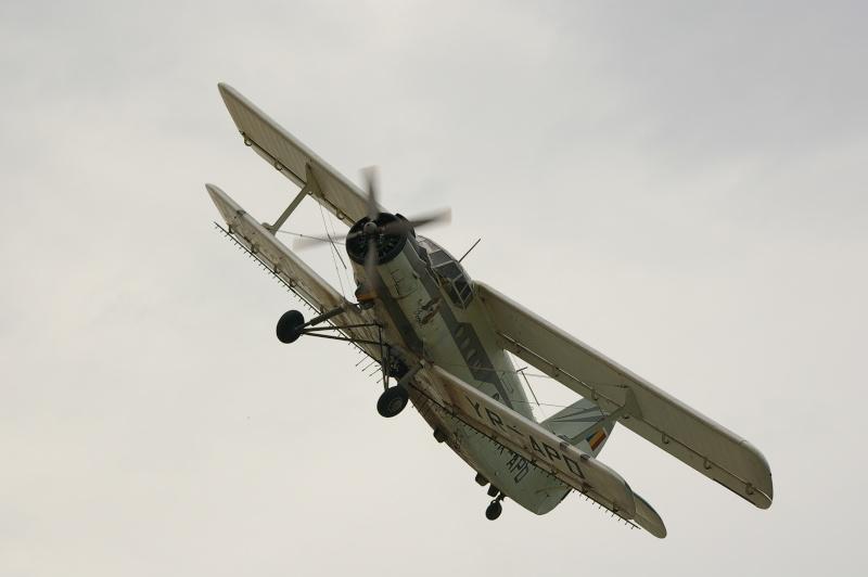 Antonov An-2 - Pagina 6 Imgp0511
