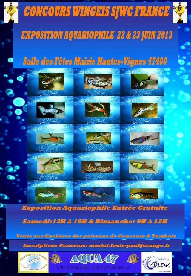 Concours Wingeis 47400 Hautes-Vignes  22-23 JUIN 2013 ______46