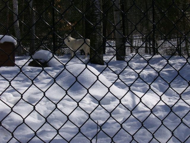Springwater Provincial Park To Close Spring14