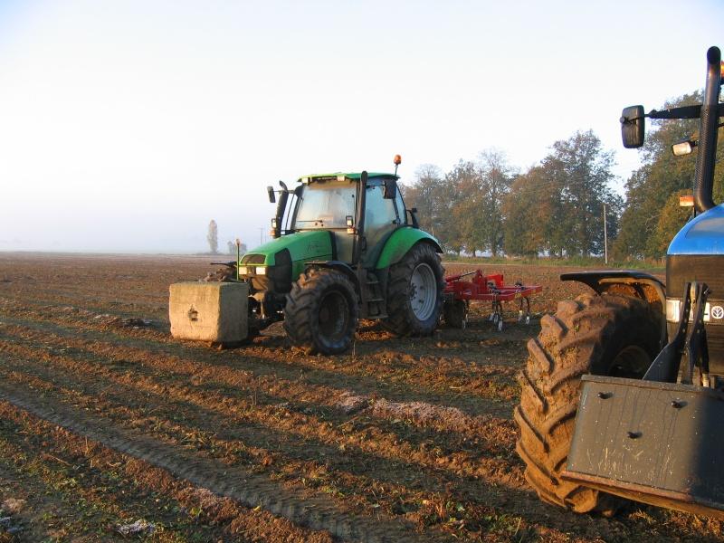 les légumes, du semis à la récolte Arrach16
