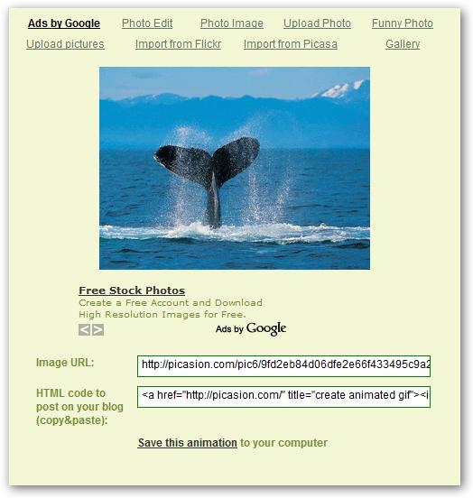 Como crear un GIF sencillo en Internet Picaso12