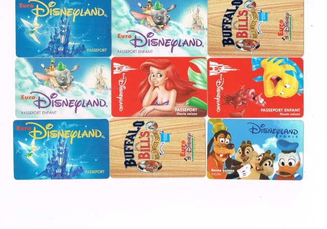 Passeport Disneyland Paris 0110